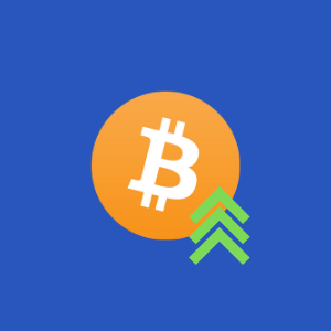 bitbulb all daily crypto new feeds
