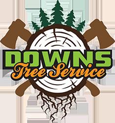 Tree Trimming Duluth MN
